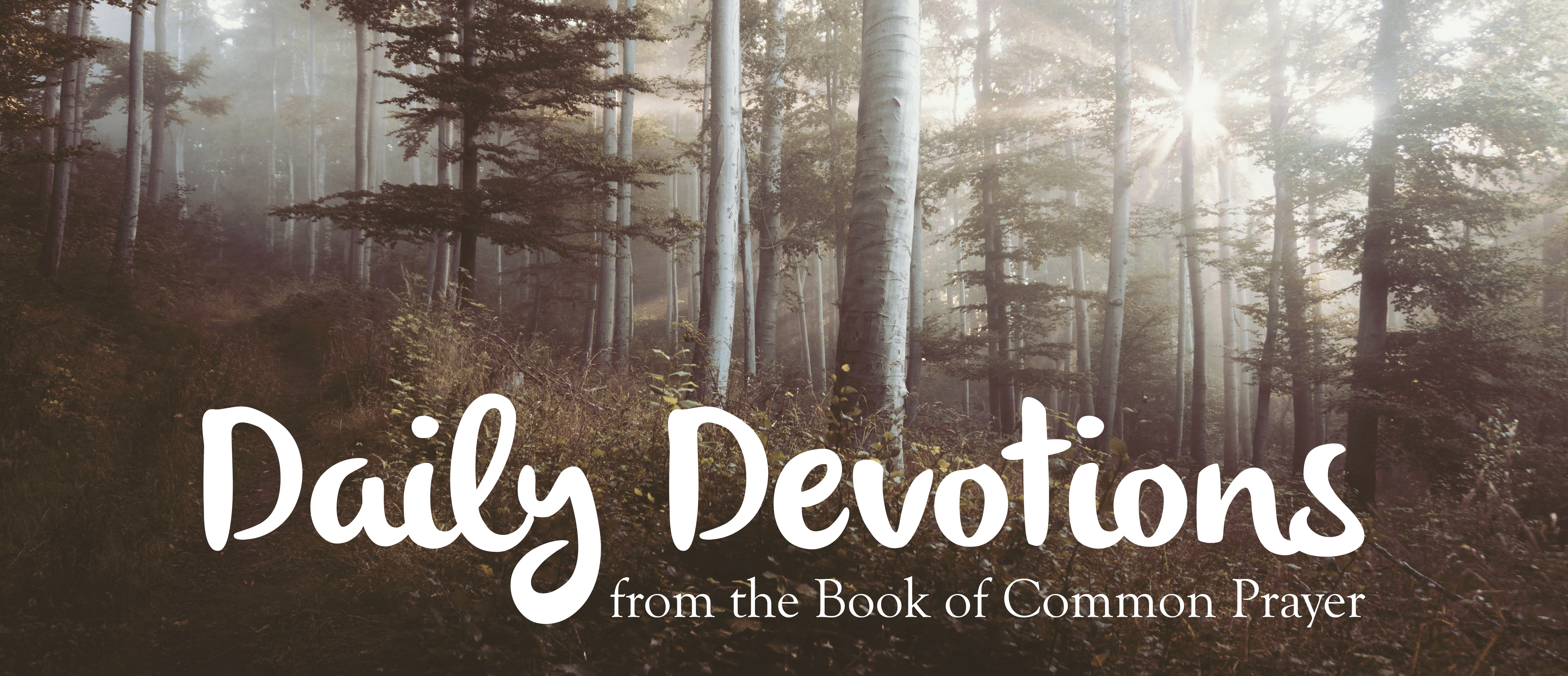 church of the highlands daily devotional