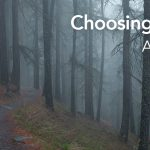 Choosing The Path